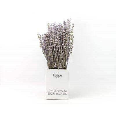 Griechischer Lavendel schattengetrocknet - kalios
