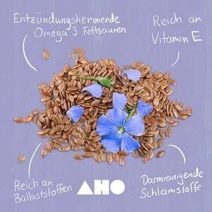 AHO Natur Cracker 2.0 - Bio und Roh - 100g