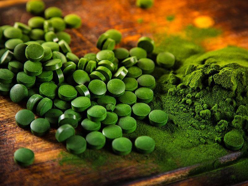 Chlorella Alge - Ein natürlicher B12 Lieferant