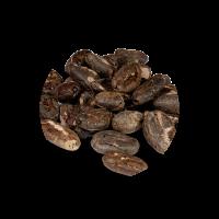Lifefood - Kakaobohnen - Bio und Rohkostqualität