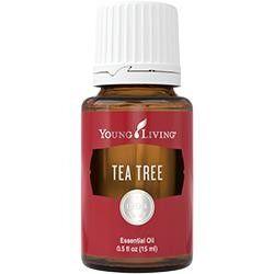 Young Living Ätherisches Öl: Tea Tree (Teebaum) 15ml